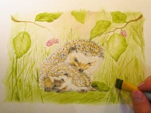 Hedgehogs painted with tea